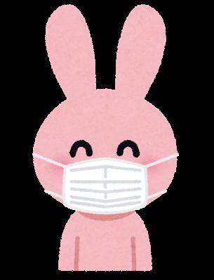 マスク 洗い 方 正しい 布